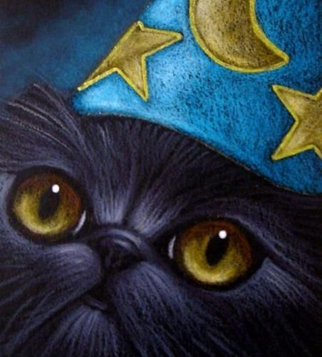 New Short Story: The Wizard's Cat (Pt 3)